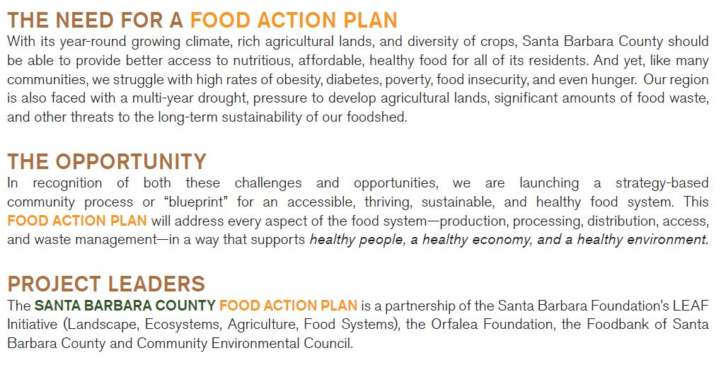 Need for Food Action Plan section