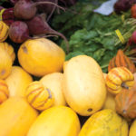 Santa Barbara County Food Waste Recovery Round Table