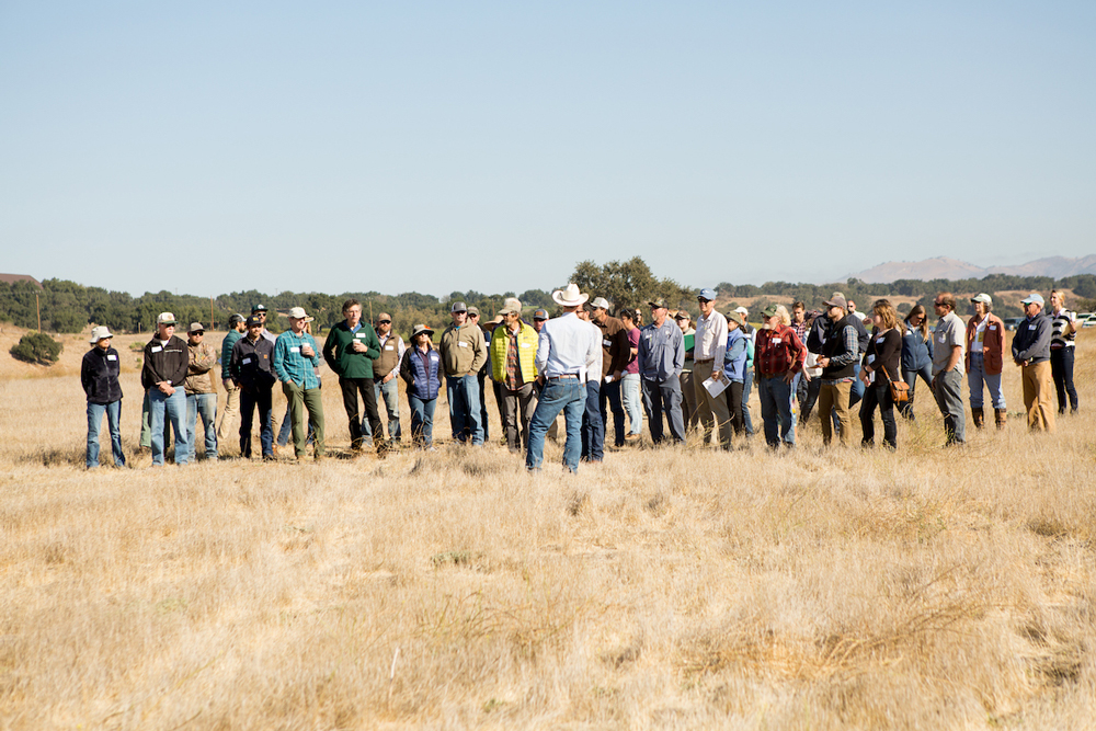 Carbon Farming Initiative Takes Tentative First Steps In Santa Ynez Valley