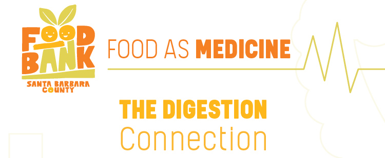 Food As Medicine: The Digestion Connection